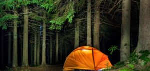 How To Plan The Good Picnic In Garner State Park